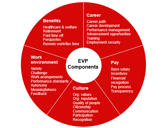 Emploer Value Proposition components